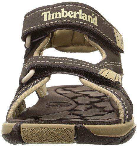Timberland Adventure Seeker Sandalia De Dos Correas (niño Pequeño) Marrón / Moreno (descontinuado)