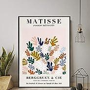 NFGGRF Abstracto Curva Geometría Poster Matisse Pintura Colorido Flor Planta Lienzo Arte Impresiones Matisse P