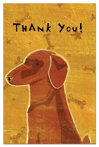 Tree-Free Greetings Eco-Notes Thank You Card Set, 4 x 6 Inches, 12-count Cards with Envelopes, Red Dachshund (Tree Free Note Card)