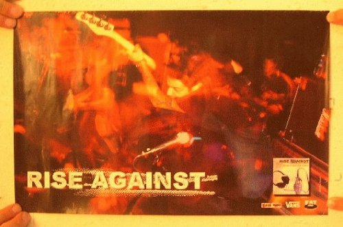 (Rise Against Poster Concert Shot)