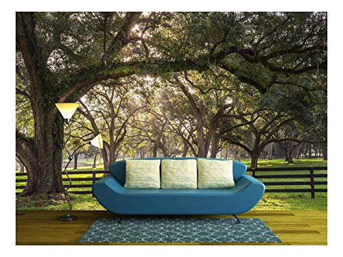 - wall26 - Large Oak Tree Branch with Farm Fence in The Rural Countryside - Removable Wall Mural | Self-Adhesive Large Wallpaper - 66x96 inches
