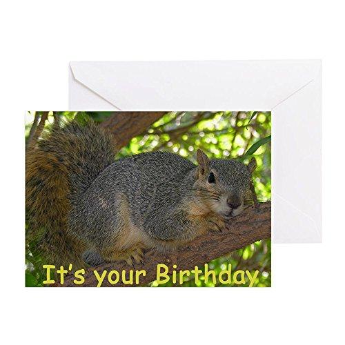 CafePress Squirrel Birthday Card Greeting Card, Note Card, Birthday Card, Blank Inside Matte
