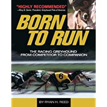 Born to Run: Racing Greyhound, from Competitor to Companion