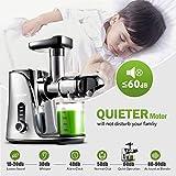 Juicer Machines,AMZCHEF Slow Masticating Juicer