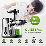 Juicer Machines,AMZCHEF Slow Masticating Juicer Extractor, Cold Press Juicer with Two Speed Modes, 2 Travel bottles…