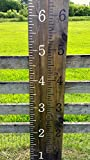 CELYCASY Growth chart ruler wooden growth chart kids growth chart Hand painted homemade giant rulers measuring sticks Kids Nursery
