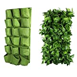 Wall Planter Holder 18 Pockets Wall Hanging Planter Garden Grow Bags (3X6)
