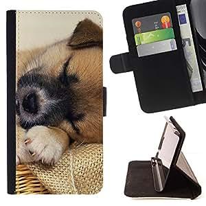 Momo Phone Case / Flip Funda de Cuero Case Cover - Tibetan Spaniel Mutt Perro Mestizo; - Sony Xperia M5
