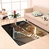 Sophiehome skid Slip rubber back antibacterial  Area Rug internet marketing and online banking payment on mobile smart device app via digital communication 519983509 Home Decorative