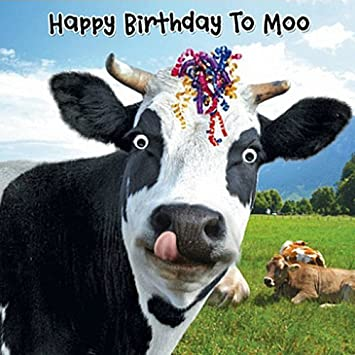 Cow streamers birthday card happy birthday to moo 3d goggly bookmarktalkfo Images