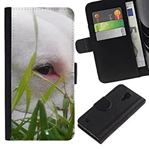 Billetera de Cuero Caso del tirón Titular de la tarjeta Carcasa Funda del zurriago para Samsung Galaxy S4 IV I9500 / Business Style Cute Bullterrier Grass Summer Dog Pet