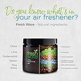 Fresh Wave Odor Removing Gel, 15 oz. - Special