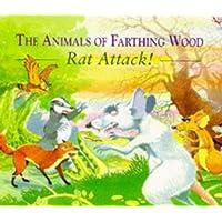 Rat Attack! (Red Fox picture books)