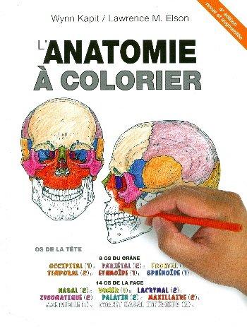 Lanatomie A Colorier 4e