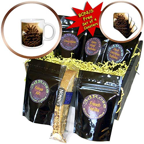 (3dRose Stamp City - still life - A close up still life photograph of a single pinecone. - Coffee Gift Baskets - Coffee Gift Basket (cgb_302861_1))