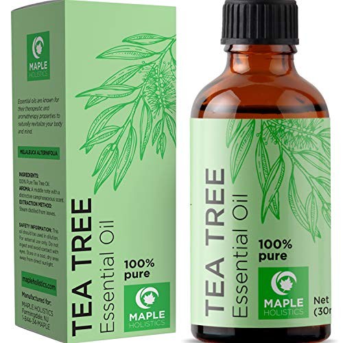 100% Pure Tea Tree Oil Natural Essential Oil with Antifungal Antibacterial Benefits for Face Skin Hair Nails Heal Acne Psoriasis Dandruff Piercings Cuts Bug Bites Multipurpose Surface Cleaner from Maple Holistics