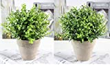 U'Artlines 2 Pack Artificial Plastic Mini Plants Topiary Shrubs Fake Plants with Gray Pot for Bathroom,House Decorations,2 Styles (2pcs Pattern 2)