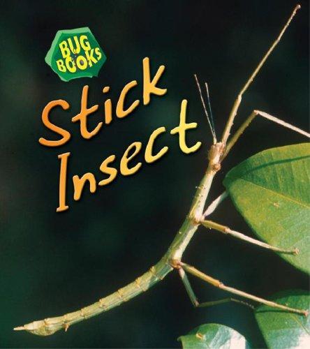 Download Stick Insect (Bug Books) pdf epub