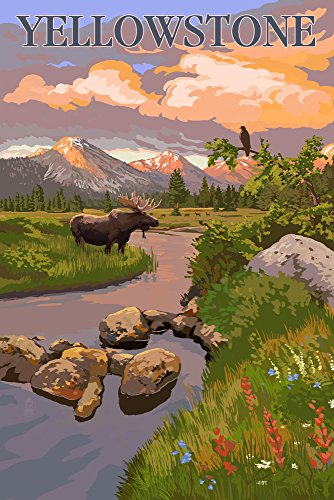 - Yellowstone National Park - Moose and Mountain Stream at Sunset (12x18 Art Print, Wall Decor Travel Poster)