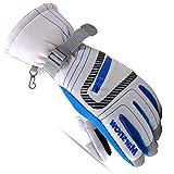 Tsptool Winter Warm Gloves Windproof & Waterproof Snow Ski Gloves