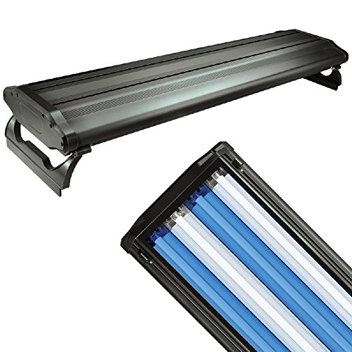 Wave-Point 36-Inch 156-Watt 4 Bulb High Output T-5 Lighting System, Black by Wave-point