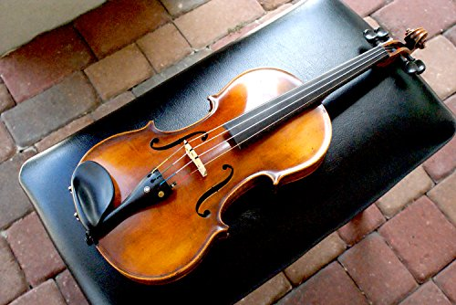GLAESEL VIG1 4/4 Violin with Solid Spruce Top, Made in Germany, Brand New (Best Brands In Germany)