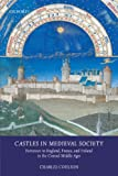 Castles In Medieval Society: Fortresses In England, France, And Ireland In The Central Middle Ages