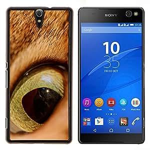 EJOOY---Cubierta de la caja de protección para la piel dura ** Sony Xperia C5 Ultra ** --Gato jengibre anaranjado Ojo Pelo Corto Alumno