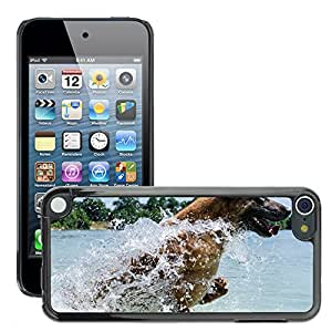 Hot Style Cell Phone PC Hard Case Cover // M00108292 Malinois Dog Water Jump // Apple ipod Touch 5 5G 5th