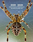 2019 - 2020 | 18 Month Weekly & Monthly Planner July 2019 to December 2020: Spider Insect Nature Vol 31 Monthly Calendar with U.S./UK/ ... Holidays- Calendar in Review/Notes 8 x 10 in.