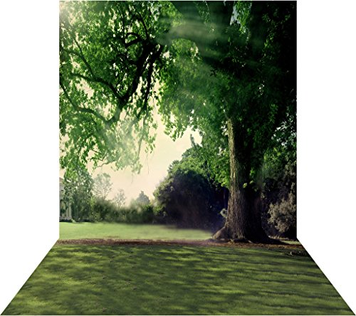 Ouyida Forest landscape 10X15FT(300X450CM) Pictorial cloth Customized photography Backdrop Background studio prop GQ20 (Landscape Backdrops)