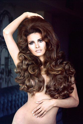 Raquel Welch Naked Stunning Sexy pin-up 24X36 Poster long hair covering chest, wow! from Silverscreen