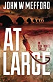 img - for AT Large (An Alex Troutt Thriller, Book 2) book / textbook / text book