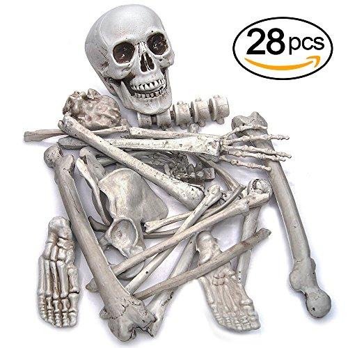 Pawliss 28 Pc Set Halloween Graveyard Human Skeleton Decorations Life Size Bag of Plastic Bones Skull Props Decor