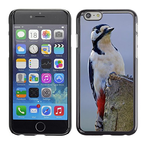 Premio Sottile Slim Cassa Custodia Case Cover Shell // F00025393 oiseaux Observer // Apple iPhone 6 6S 6G PLUS 5.5""