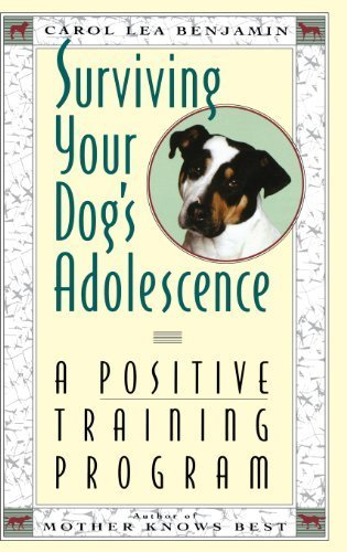Surviving Your Dog's Adolescence: A Positive Training Program (Howell reference books) by Benjamin, Carol Lea (1993) Hardcover