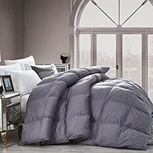 LUXURIOUS All-Season Goose Down Comforter Duvet Insert, Classic Gray, Premium Baffle Box, 1200 Thread Count 100% Egyptian Cotton Cover, 750+ Fill Power by Egyptian Cotton Factory Outlet Store