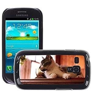 Super Stella Slim PC Hard Case Cover Skin Armor Shell Protection // M00105739 Kitten Cat Pet Pets Cats Feline // Samsung Galaxy S3 MINI i8190