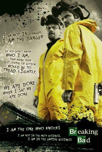 Notorious Breaking Bad Poster