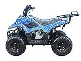 Brand new 110cc ATV Fully Automatic Gas 4 Wheeler ATV for Kids - Brand New COLOR :  BLUE SPIDER