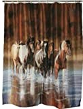 Best River's Edge Homes Curtains - Rivers Edge Running Horses Shower Curtain Review