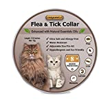 Ultra Flea Collars For Kittens Review and Comparison