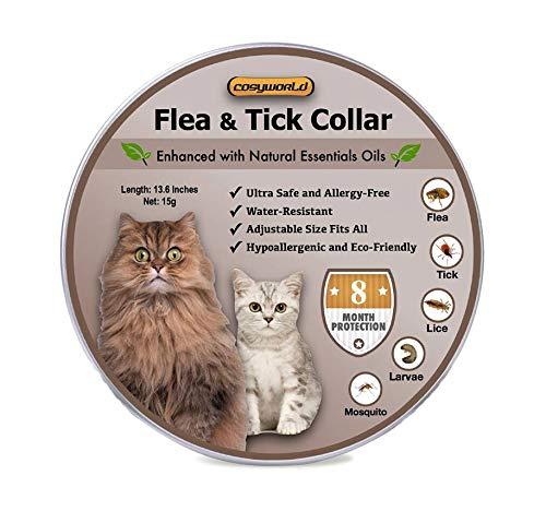with Flea Control design