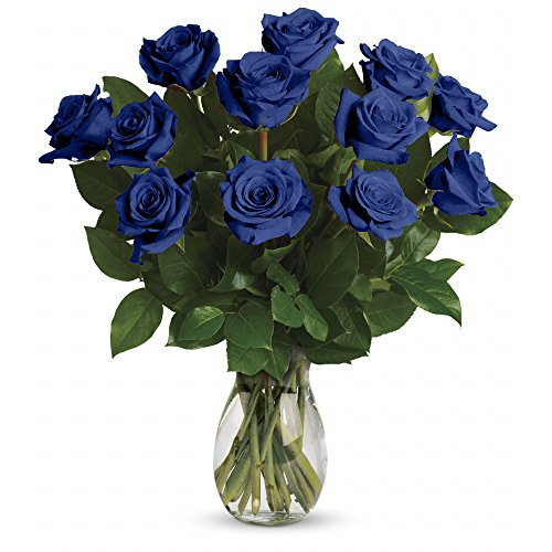 Farm Direct Rose Tinted Bouquet of 12 Fresh Cut Roses with Vase (Blue & White)