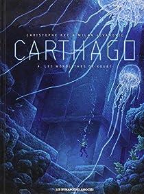 Carthago (4) : Les monolithes de Koubé
