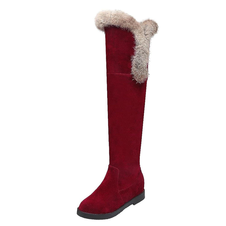 Carolbar Women's Faux Fur Fashion Hidden Heel Tall Snow Boots