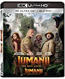 Jumanji: The Next Level [Blu-ray] (Bilingual)