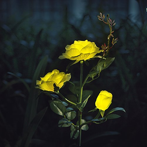 XLUX Outdoor Decorative Solar Rose LED Lights, Yellow