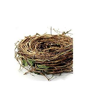 """Richland Bird Nest Wreath Honeysuckle 10"""" 38"""