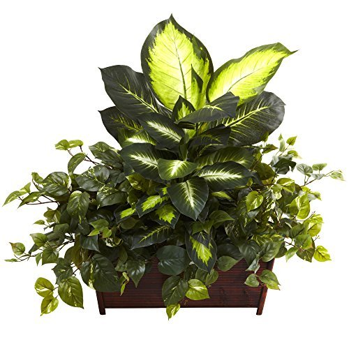 Nearly Natural 6803 Dieffenbachia Philo and Pothos with Wood Planter, Golden -